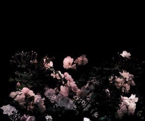 flowers, black, and dark image