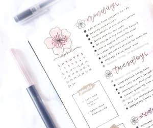 calendar, Muji, and sakura image