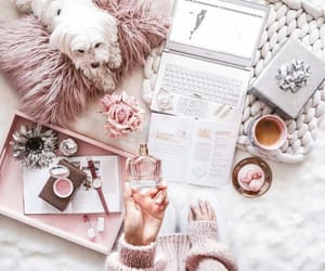 theme and pink image