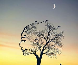 woman, moon, and sunset image