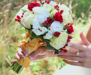 fresh cut flowers and wholesale fresh flowers image