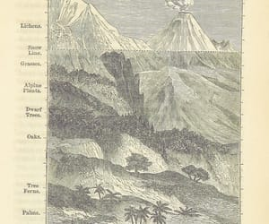 medium, sherlocknet:tag=grand, and cartée, cornelius s. image