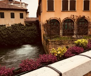 fun, happy, and italy image