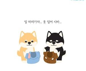 dog, south korea, and cute image