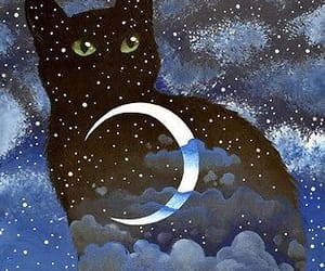 adorable, cat, and moon image