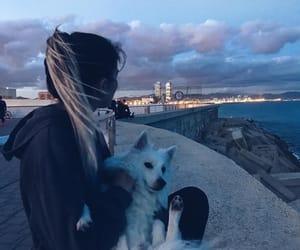 Barcelona, ocean, and pet image