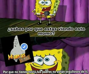 bob esponja, funny, and gracioso image