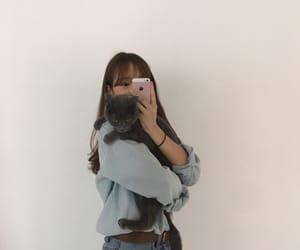 asian girl, cat, and ulzzang image
