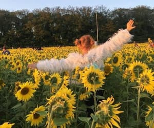 flowers, sunflower, and girl image