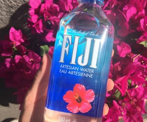 flowers, nofilter, and fijiwater image