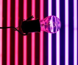 bulb, lights, and purple image