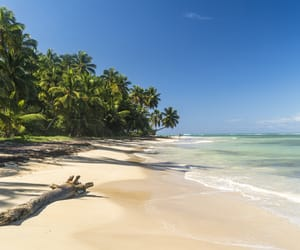 beach, travel, and tropical image