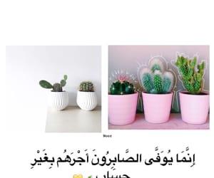 قراّن كريم, فلسطين, and رَمَضَان image