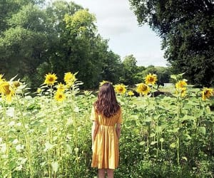 girl, sunflower, and nature image