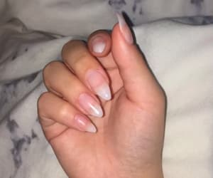 basic, claws, and marble image