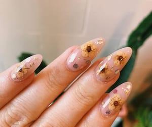 acrylic, nail art, and nails image