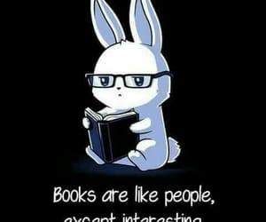 book, bunny, and reading image