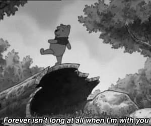 winnie the pooh, forever, and quotes image
