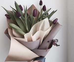 flowers, tulips, and purple image