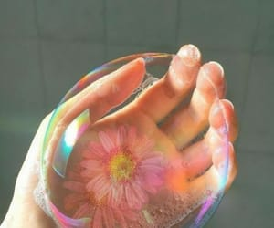 flower, bubbles, and hand image