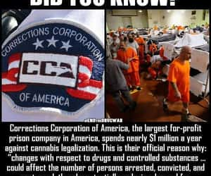 evil, prison for profit, and corrections corporation image