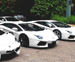 car, white, and Lamborghini image
