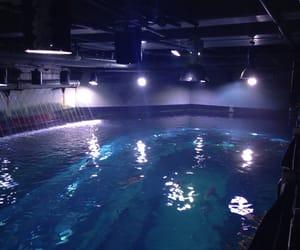 pool, blue, and lights image