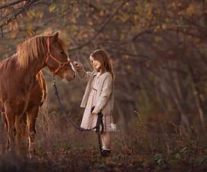 animal, autumn, and bond image