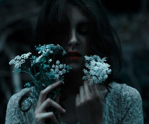 dark, flowers, and photography image
