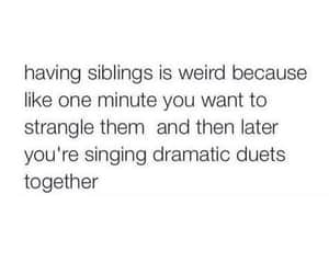 siblings, brother, and sisters image