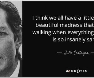 life, litterature, and quotes image