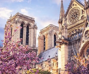 paris and gothic image