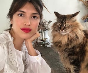 jeanne and jeanne damas image