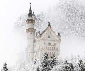 beautiful, majestic, and snow image