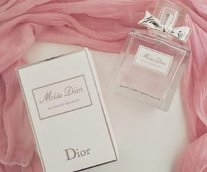 aesthetic, dior, and moodboard image