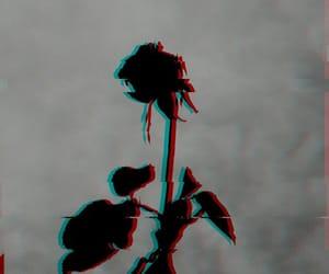 dark and flower image