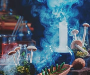 harry potter, magical, and potion image
