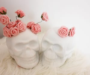 pink, roses, and skull image