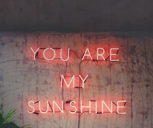 sunshine, neon, and quotes image