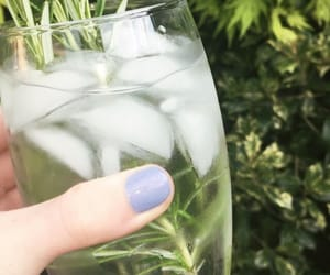 drink, herb, and ice image