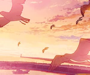 anime, birds, and Flying image