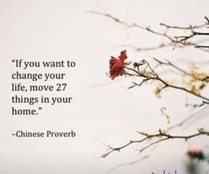 focus, goals, and chinese proverb image