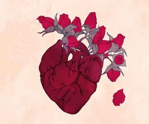 heart, rose, and flowers image