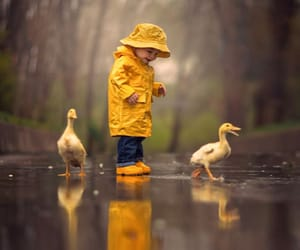 boy, kid, and photography image