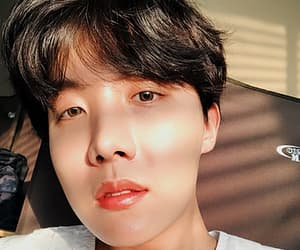 bts, selcas, and hoseok icons image