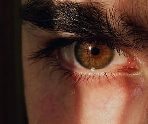 aesthetic, brown, and eyebrows image
