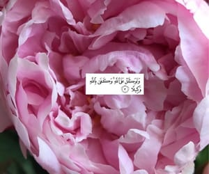 arabic, flowers, and islam image