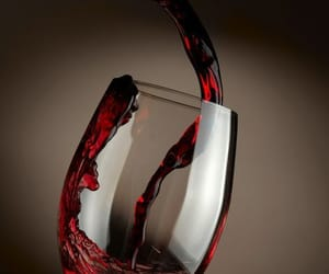 wine glass, red wine, and winery image
