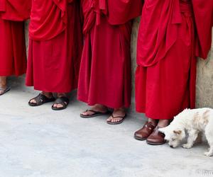 asian, buddhism, and lama image
