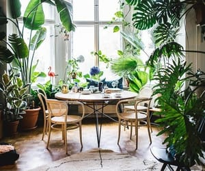bohemian, eclectic, and interior image